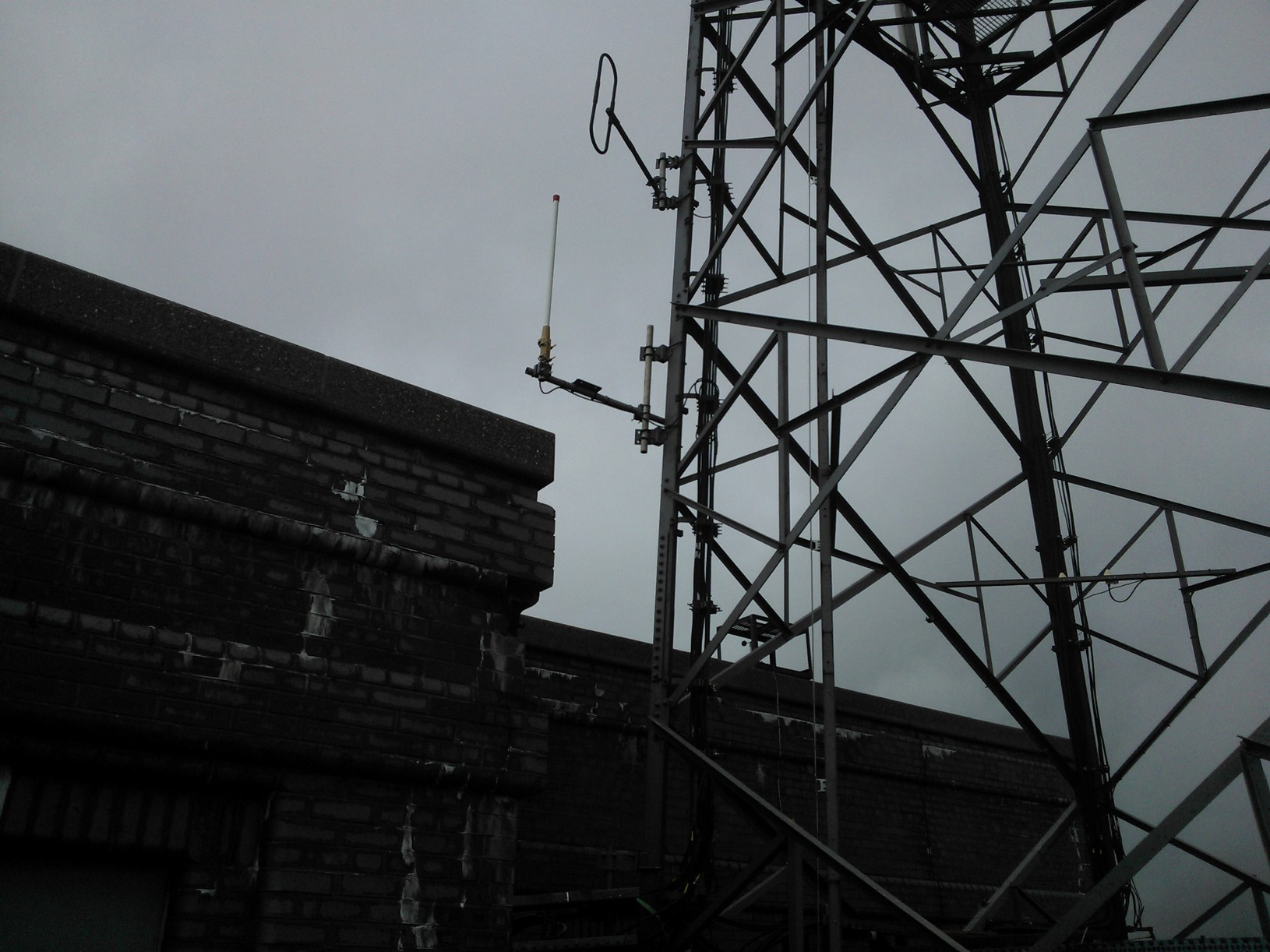 New Antenna in Temporary Location